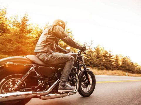 motorbikes, go karts, classic cars, vans, utes, convertibles