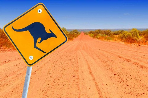 Outback Driving Safety: Aka Avoid That Roo! | Door to Door Car Carrying | Brisbane