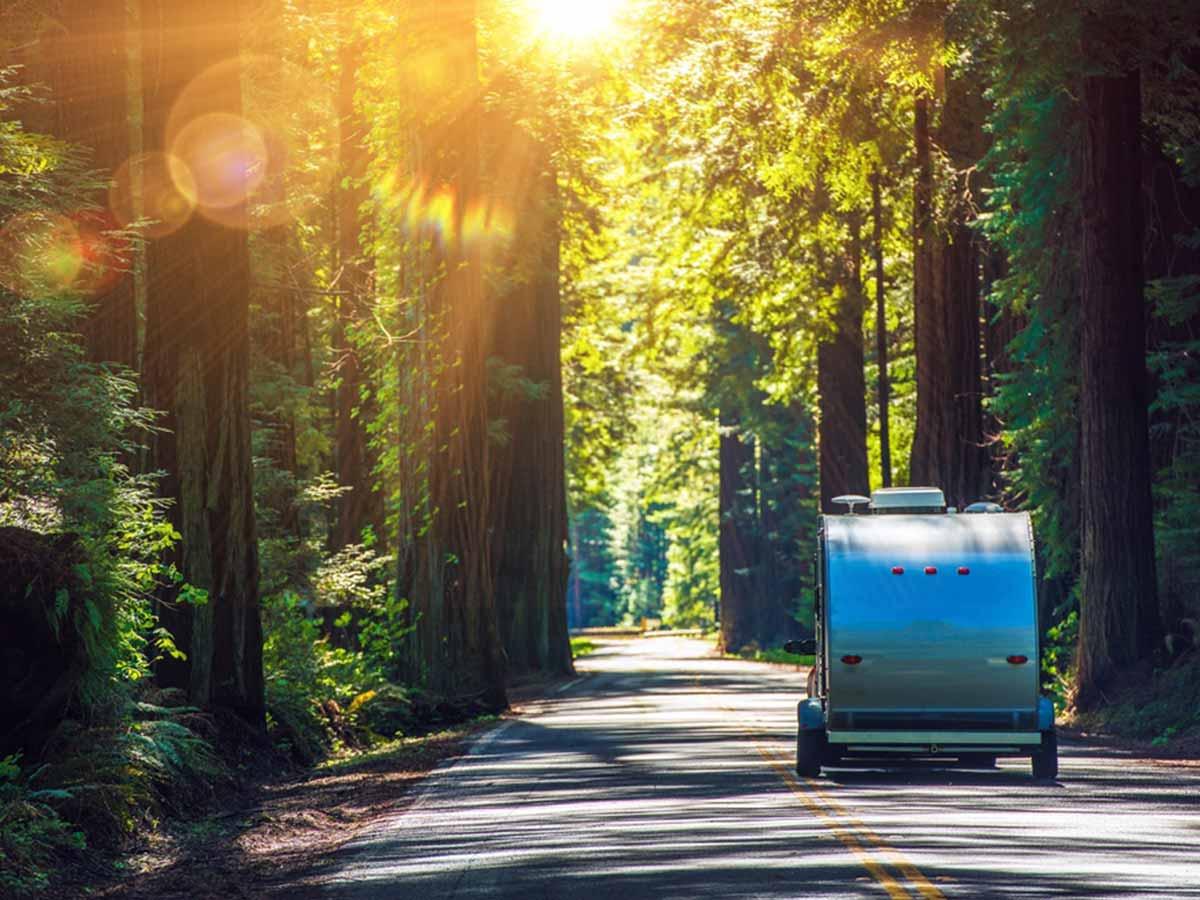camper trailers, caravans